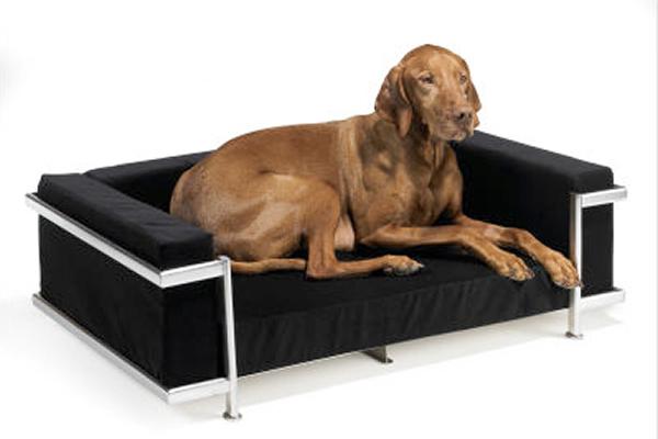 Reformas de interiores camas-para-mascotas-que-hacen-juego-con-la-decoracion