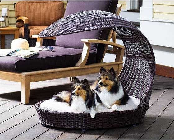 Reformas de interiores ideas decoracion mascotas camas exterior