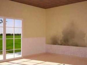 Problemas de humedad en paredes maxalto - Humedad por condensacion en paredes ...
