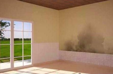 problemas de humedad en paredes maxalto